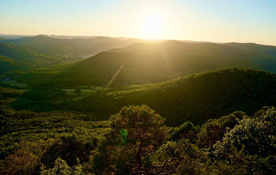 Sonnenaufgang über den Wäldern